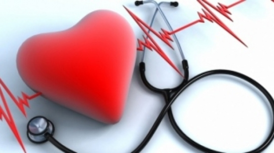 """Câmara como forma de prevenção aprova """"Semana do Coração"""""""